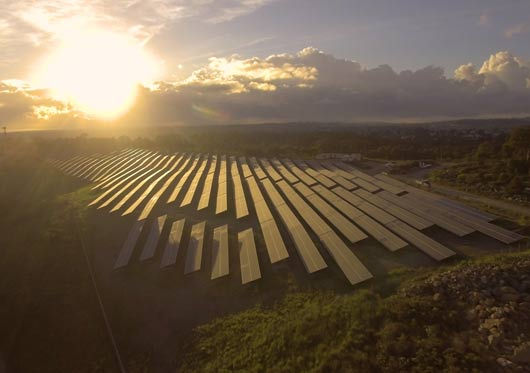 Newcastle solar farm at dawn